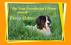 Ostern HOME